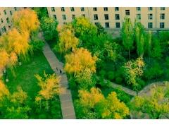 这才是我心中的东北林业大学
