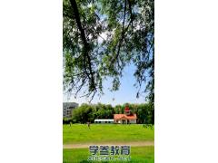 东北林业大学校园唯美风景(二)