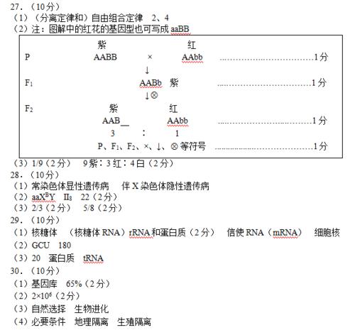 【2017—2018学年第二学期】郑州市2017—2018学年上期期末考试高中二年级生物参考答案