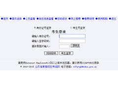 山东省2019年普通高等学校招生考试信息平台http://wsbm.sdzk.cn/