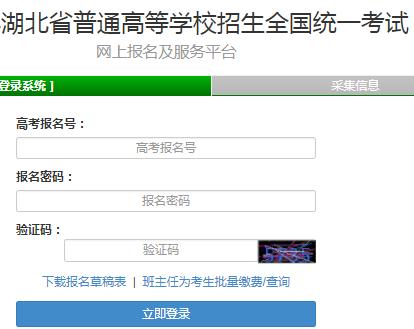 湖北省普通高等学校招生全国统一考试网上报名及服务平台